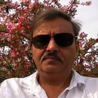 Sukesh Kohli