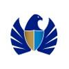Dubai Custom logo